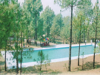 Retreat Anand Jungle Resort Lansdowne